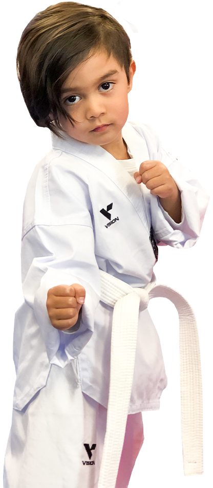young boy taking his taekwondo fighting stance