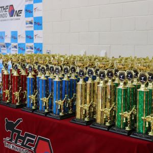 Table holding a series of trophies by the one taekwondo